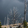 18 Standing Deadwood II ( Yellowstone )