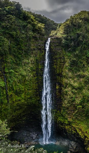 12 Akaka Falls - Near Hilo, Hawaii