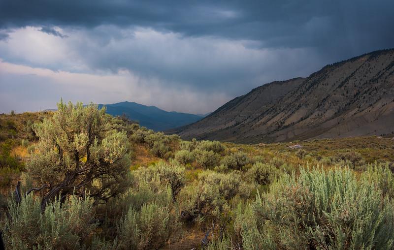 02 Yellowstone Northern Loop