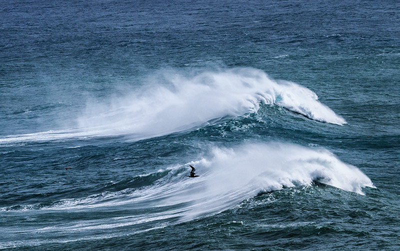04 Frigate Bird & Waves off Kilauea Point on Kauai