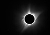 Solar Eclipse Showing Prominences & the Corona