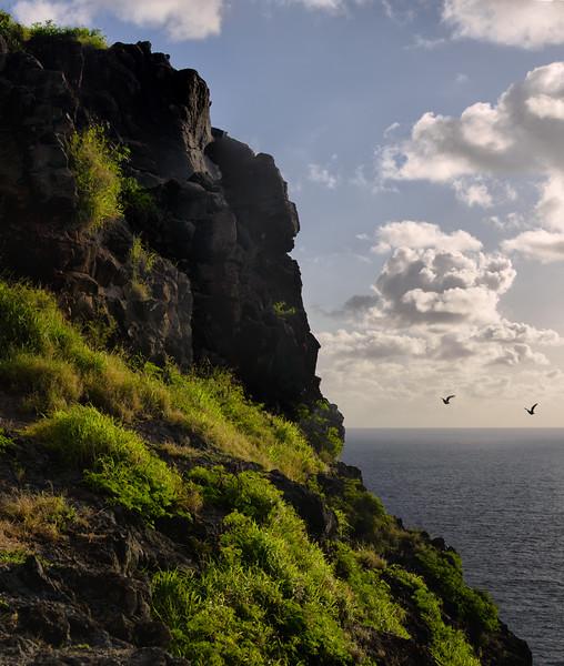 Makapuu Clff with Sea Birds