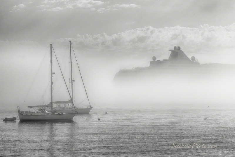 9) A Spielbergian Moment in the Morning Fog at  Bar Harbor, Maine