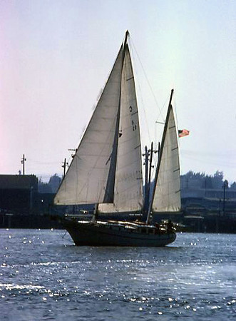 A two-masted schooner-rigged sailboat in the Alameda TIdal Basin, Alameda (1974).