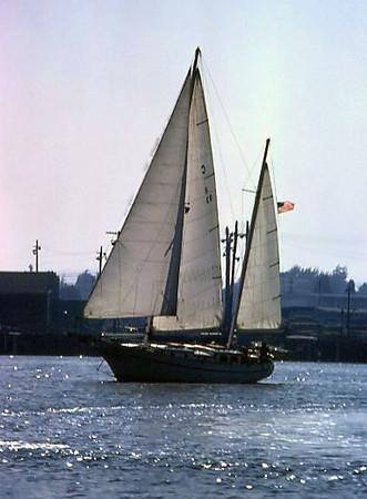 A two-masted schooner-rigged sailboat in the Alameda TIdal Basin, Alameda (1974).