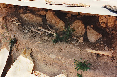 The excavation (near the Temple of Zeus site) of a single human grave, probably that of one of the site's inhabitants during the early Christian Era,  Nemea, Corinthia Province. One of the onsite staff of the U.C. Berkeley archeological team indicate that it was the skeleton of a monk or other lower-rank cleric.