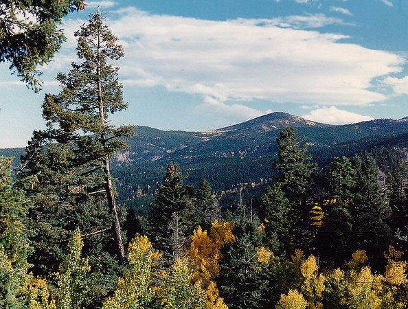 The view from my cabin at Yankee Creek (elevation 8,000 feet-plus), near Evergreen, Colorado in the Front Range of the Rocky Mountains.  September 1993
