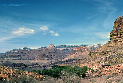 Looking up at the North Rim of the Grand Canyon from Indian Wells near the canyon bottom.  5 March 1972