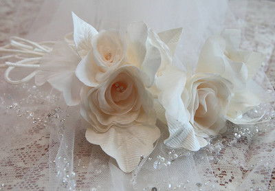 Graziano-Humphrey Wedding-jlb-10-02-11-7719