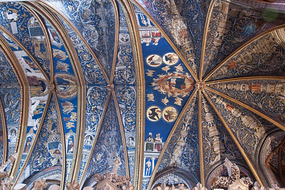 Albi Cathedral of Saint Cecilia Choir Vaults