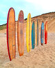 Long Board Vert 16x20 DSCF2329