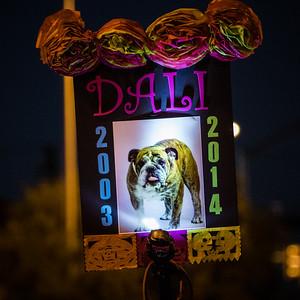 Dali, the English bulldog memorial. 25th Annual All Souls Procession 2014, Tucson, Arizona USA