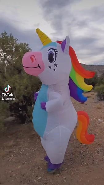 Unicorn_UT_29May2021_001