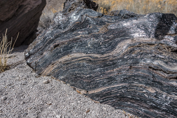 Obsidian, Mono Craters, Mono Co., California CA United States