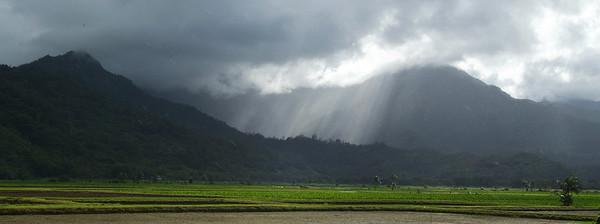'Mountain Rays', Hawaii