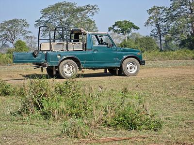 safari jeep. Kaziranga National Park, Tezpur, Assam India