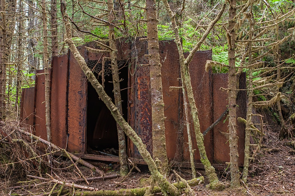 WWII bunker. Cross Sound, George Island Alaska USA