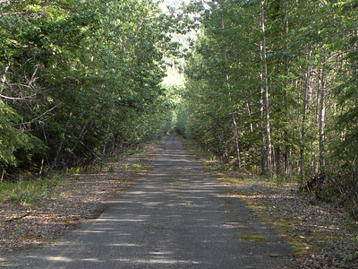 This is a portion of the old highway, on the east side of the Little Tok River.  This was replaced in 1967 by a new highway on the opposite side of the river.  The pavement is still there for about 2/3 of the 8 mile distance, with a stream crossing or two where once there were culverts.