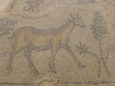 Urfa Museum