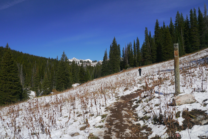 Hiking through the fresh but rapidly melting snow!