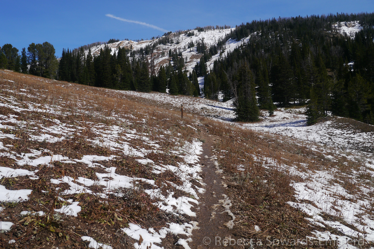 Beehive Basin Hike. The trail was so muddy thanks to the melting snow.
