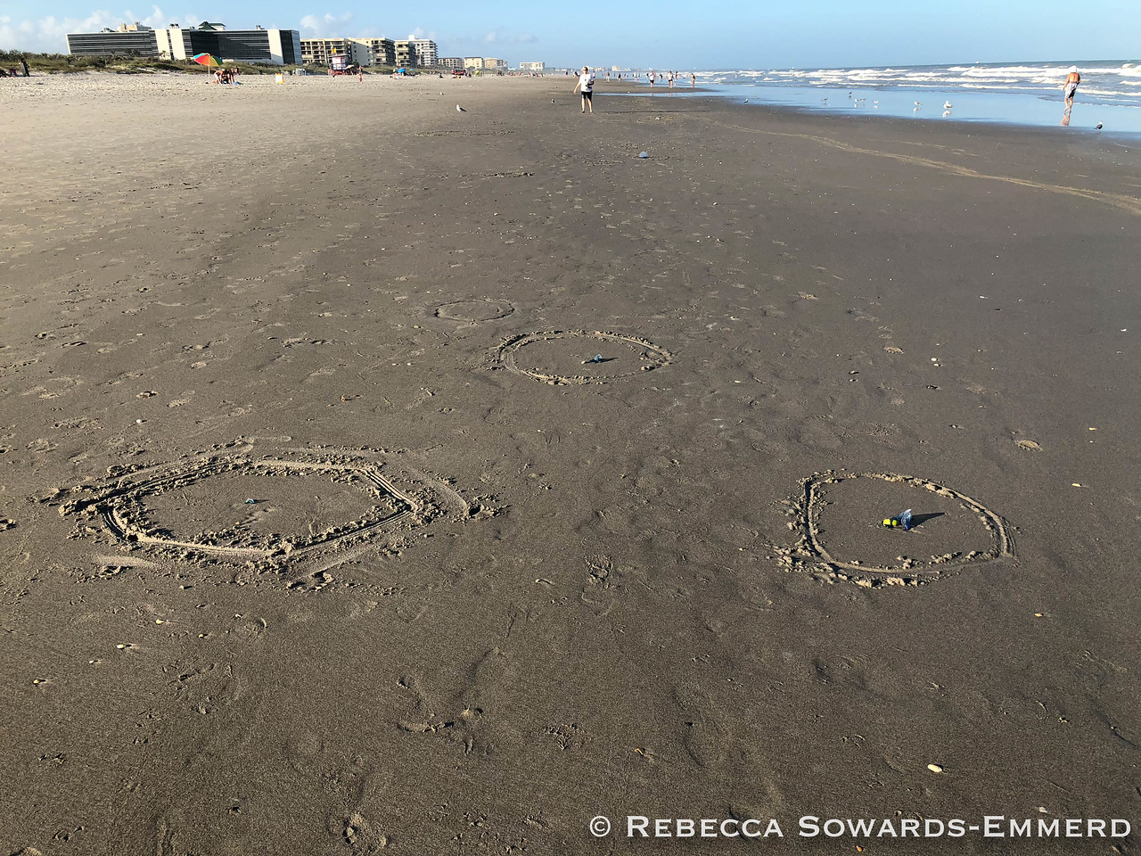 A kid had helpfully circled all of the beached jellyfish. :)