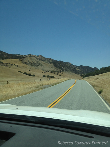 Instead of driving down 101 we took the scenic drive via 25 along the San Andreas fault.