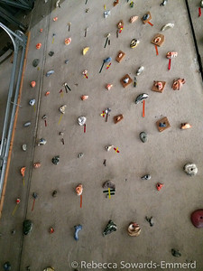 The climbing wall.
