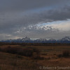 Tetons in the morning