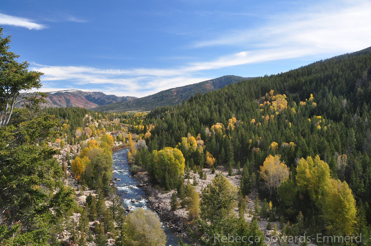 We continued out Gros Ventre road into National Forest and found some beautiful fall scenery near Slide Lake
