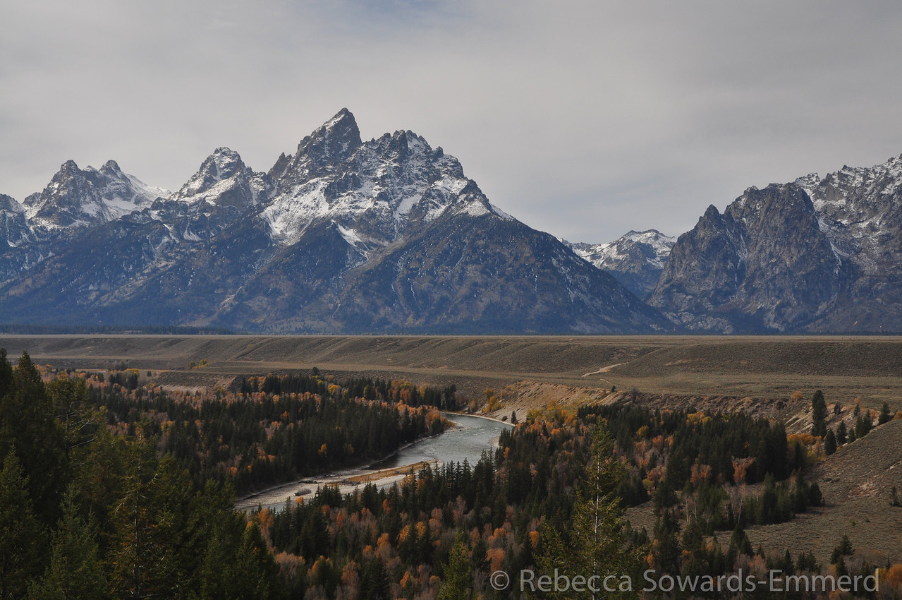 """Back down on the flats, we stopped (ooooh) at the Snake River view point in the park. Close to a famous <a href=""""https://www.google.com/search?q=ansel+adams+snake+river&espv=210&es_sm=91&source=lnms&tbm=isch&sa=X&ei=pgxoUqSHEsKc2gXc8oDYAQ&ved=0CAkQ_AUoAQ&biw=1798&bih=896"""">Ansel Adams shot location</a>."""
