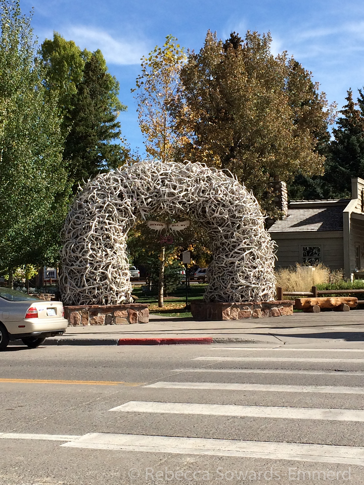 Back in Jackson we checked into our hotel and wandered the shops. That is quite an elk horn arch.