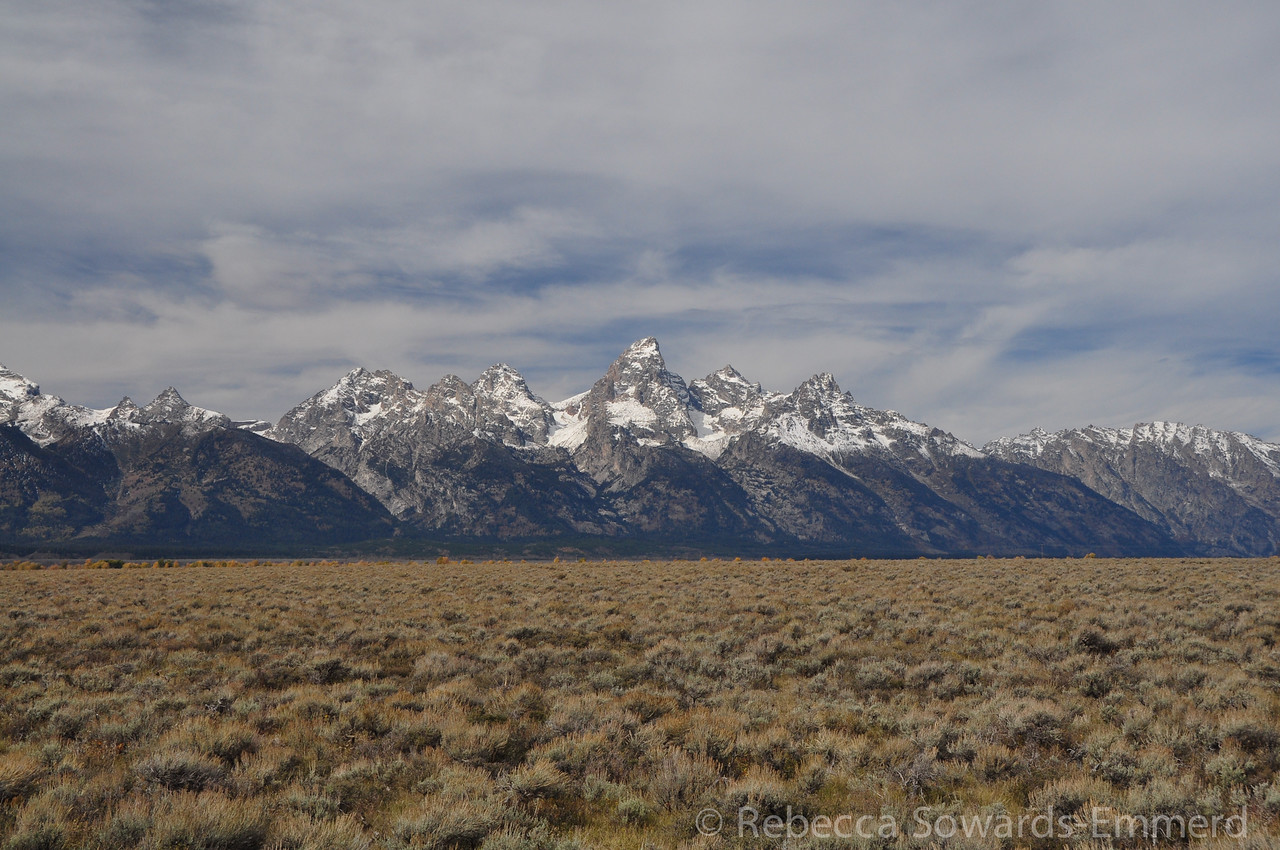 We decided to do a drive over Shadow Mountain on NF land just east of the Grand Teton boundary.