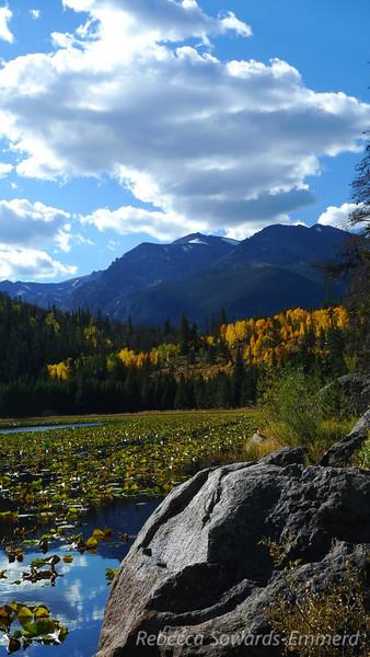 Cub lake and fall colors.