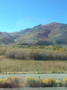 Some more fall color where we turned north to Idaho.