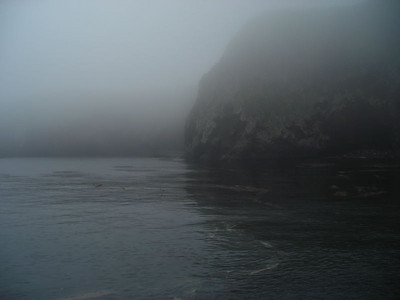 The island emerges from the fog as we get to the dock