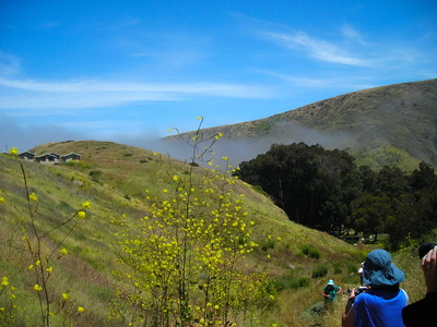 We took a walk up to the ridge to enjoy the views, but it turns out the island was still surrounded by fog