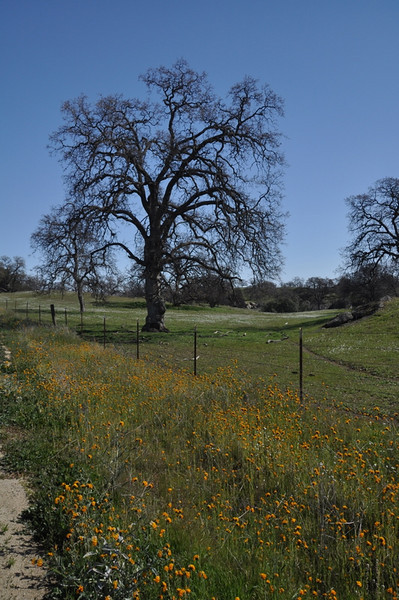 Near Raymond, CA