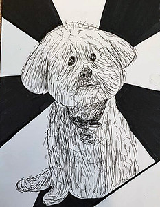 Filling a page each day of 2018. Here's January 1st, a little drawing of Bono @joe.muzina 's dog.