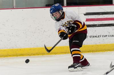 Carter Wolfpack Hockey 03.09.14