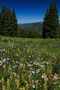 Ridge Route trail
