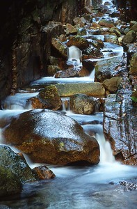 The Flume, Franconia Notch, New Hampshire 316-45