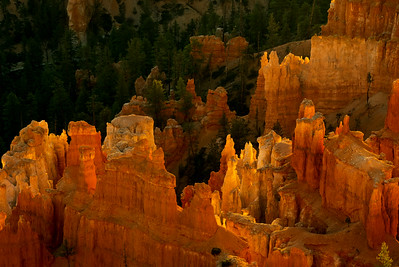 Bryce Canyon National Park at sunrise