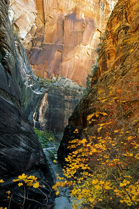 Echo Canyon, Zion National Park