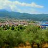 Vy över olivodlingar och Limenas