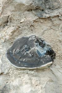 rocks gesteenten roches