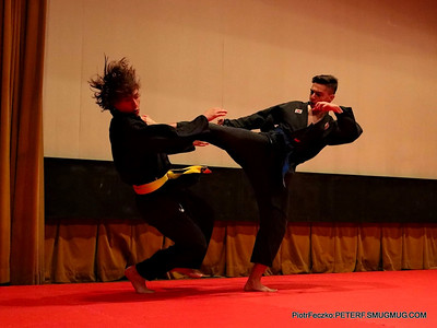 Hapkido Martial Sports and Arts Festival Cracow may 2016