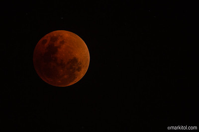 Super Blue Blood Moon 70D, 500/4, ISO 800, f/4, 1/5s, manual exposure, manual focus via LV, cable release, Sirui R-5214X/Benro GH2