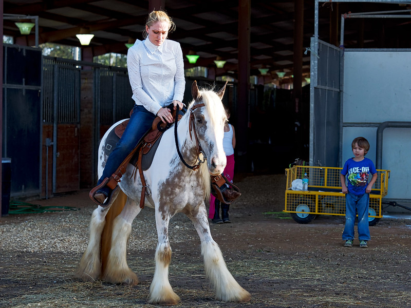 Admiring Onlooker at Feathered Horse Classic