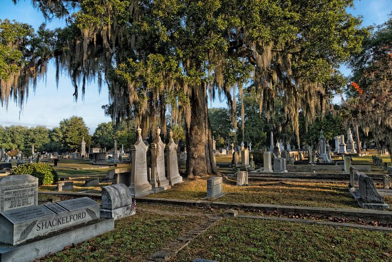Magnolia Cemetery, Charleston
